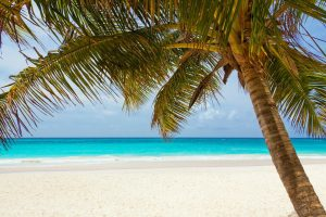 excellence resorts vs sandals 300x200 - Excellence resorts vs Sandals